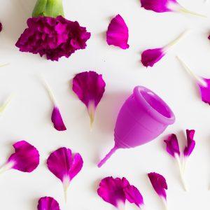 Lunette Violet